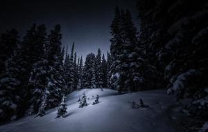 Snow_and_Silence